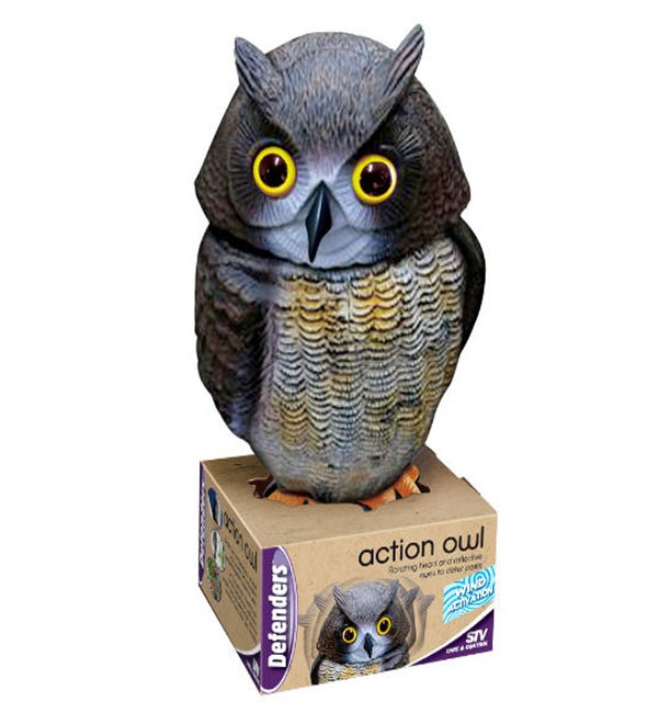 Wind Action Owl